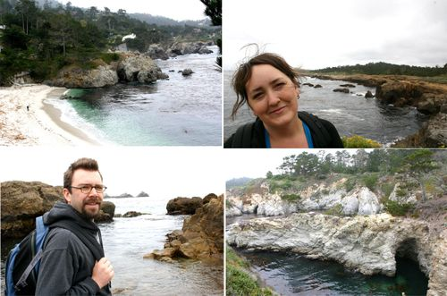 Point lobos collage