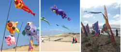 Kite_collage